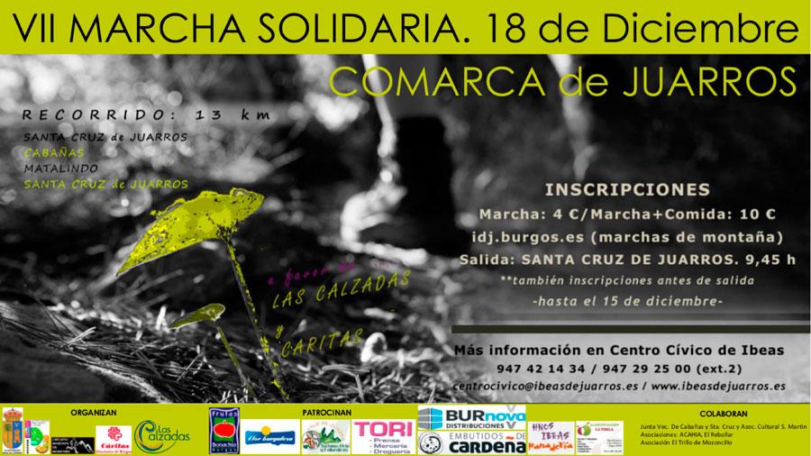 cartel de la marcha solidaria